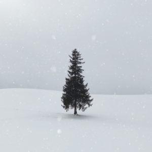 Felieton zimowy